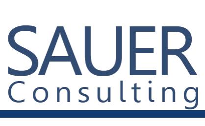 sauer-consulting.com